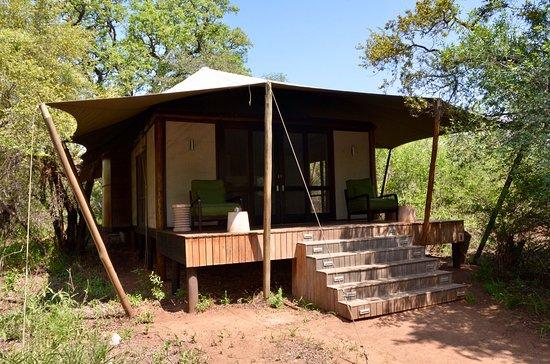 andBeyond Ngala Tented C& & andBeyond Ngala Tented Camp - Picture of andBeyond Ngala Tented ...