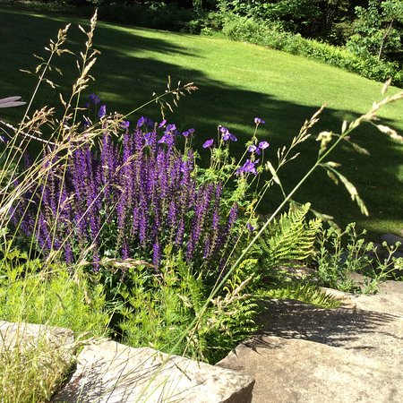 West Halifax, VT: Flower gardens are everywhere on the property