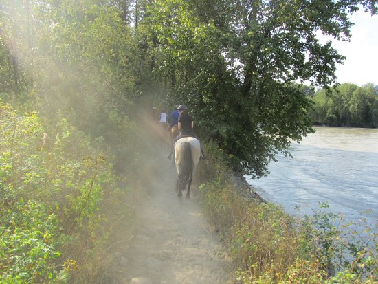Pemberton, Canadá: The trail along the river was enjoyable