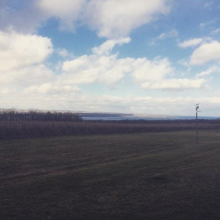 Lodi, État de New York : View from the estate!