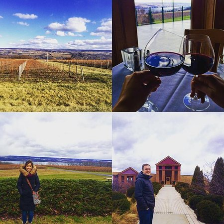 Lodi, État de New York : Vineyard and tasting room montage