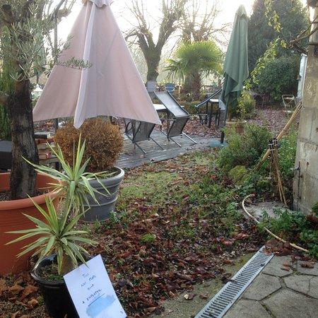 La Roche-Posay, France: Jardin