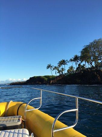 Maui Reef Adventures
