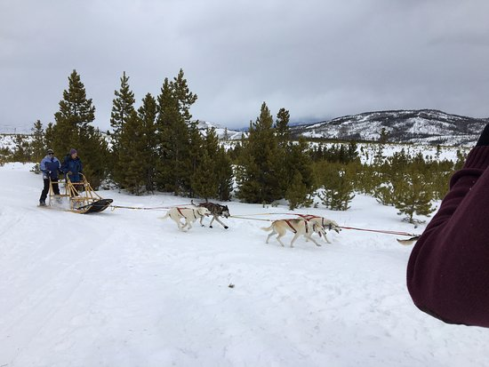 Snow Mountain Ranch: On-site dog sled rides.