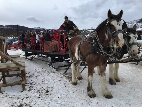 Snow Mountain Ranch: Hot cocoa sleigh ride with Sombrero Stables, on-site.