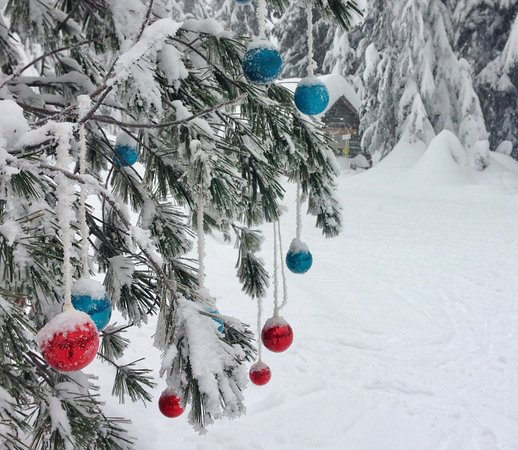 West Vancouver, Canadá: A Christmassy touch
