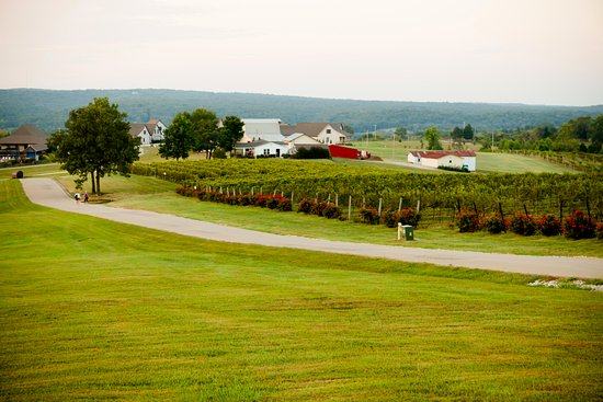 Sainte Genevieve, MO: View from the Tasting Room & Grapevine Grill