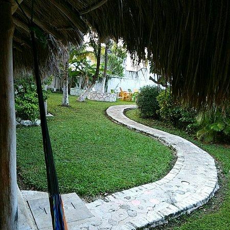 Amigos Hostel Cozumel : IMG_20170108_081955_large.jpg