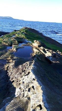 Zdjęcie Gabriola Island