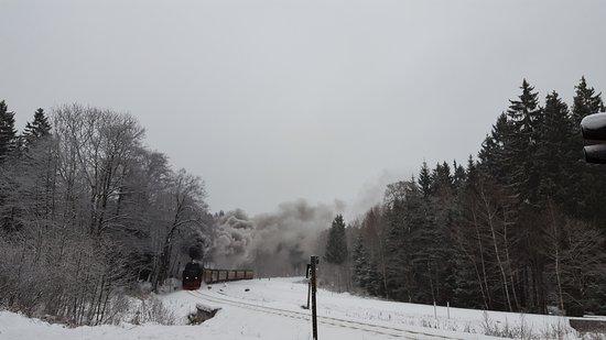 Harz National Park: 20170108_095011_large.jpg