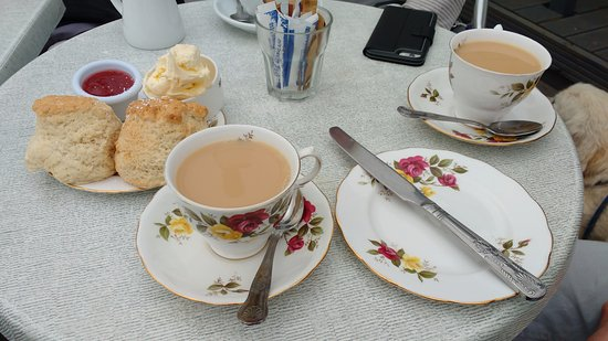 Coverack, UK: Warm, fresh scones! Beautiful cream, lovely jam.