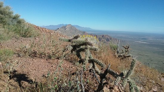 Franklin Mountains State Park: Hike up to North Franklin Peak.
