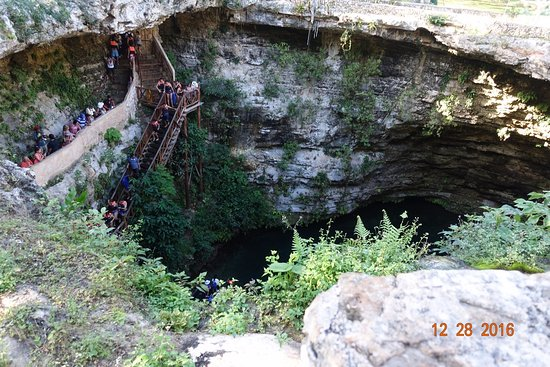 Sacred Cenote: Steps leading to the cenote