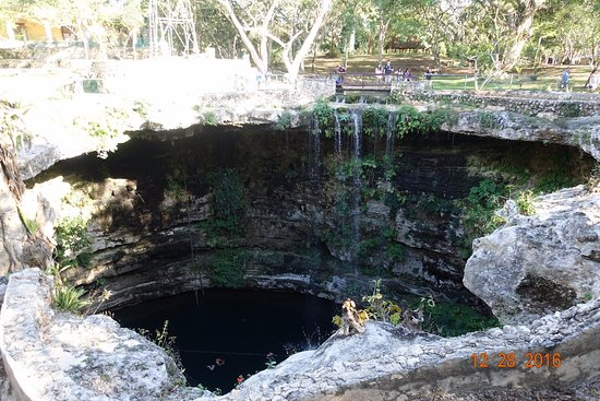 Sacred Cenote: Veiw of cenote from top