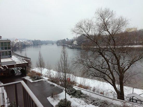 Park-Hotel am Rhein: Rhin