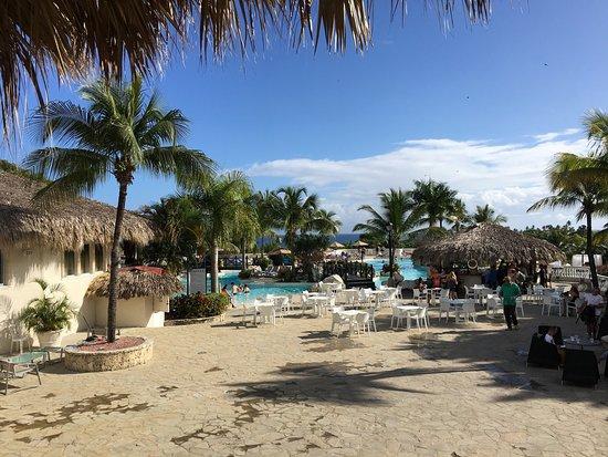 Cofresi Palm Beach And Spa Resort Puerto Plata Reviews