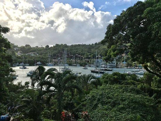 Mango Beach Inn: View from the breakfast room