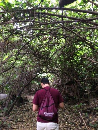 Ticuantepe, نيكاراجوا: Chocoyero-El Brujo Natural Reserve