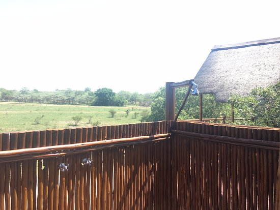 Pezulu Tree House Game Lodge: View from outdoor shower