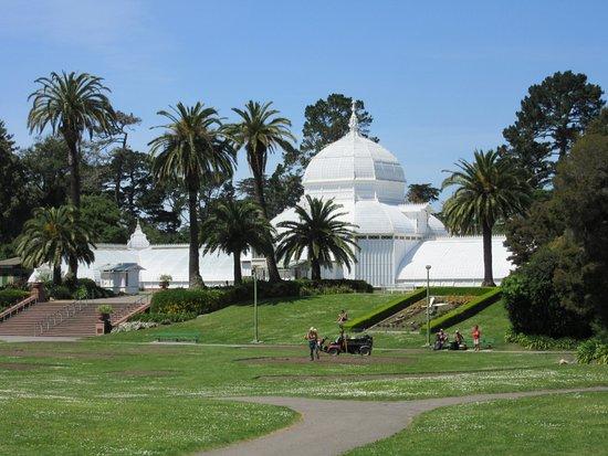 Golden Gate Park: San Francisco Botanical Garden.