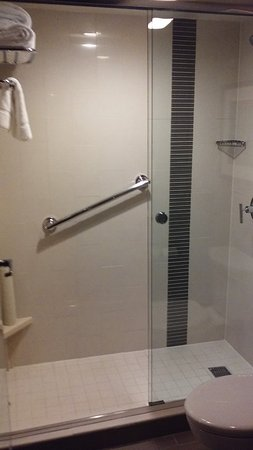 Johns Creek, GA: Walk-in tiled shower