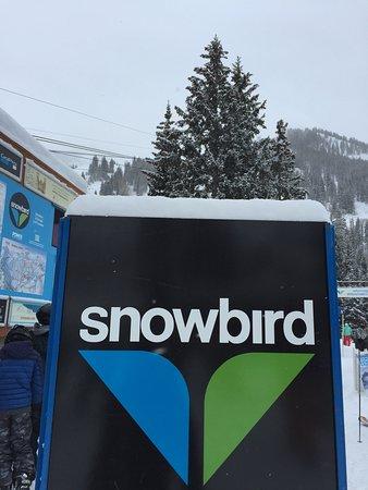 Snowbird, UT: photo0.jpg