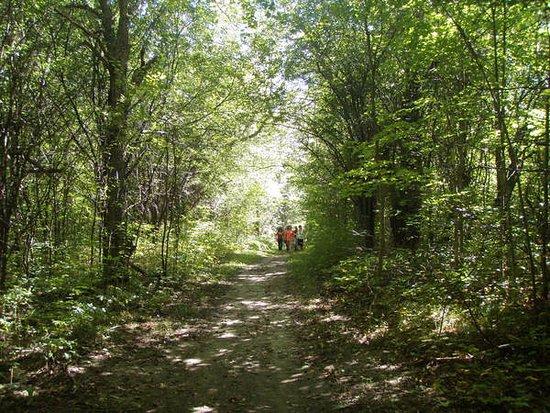 Bowmanville, Canadá: Long Sault