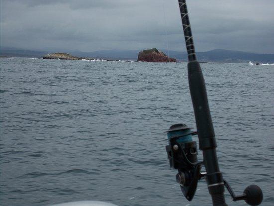 Twofold Bay Motor Inn: Great fishing in waters off Eden