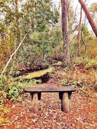 Keystone Heights, FL: photo3.jpg