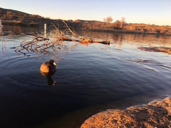 Patagonia, Arizona: photo3.jpg