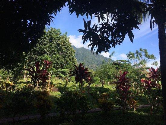 Moyogalpa, Nicaragua: photo1.jpg