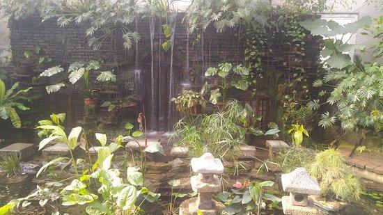 Geumsan-gun, Corea del Sur: in botanic garden