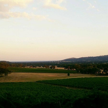 Moonambel, Australia: Overlooking the vineyard from our room.