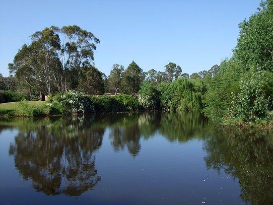 Nannup, Australia: Moss Brook B&B Lake