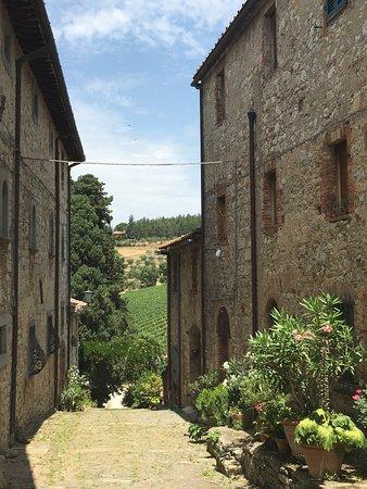 I Bike Tuscany: Fonterurtoli