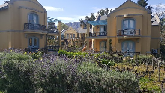 Franschhoek Country House & Villas Picture