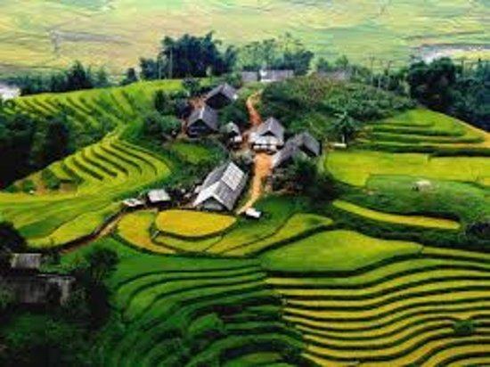 Charm Tour Vietnam