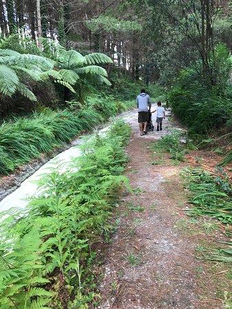 Wairakei Resort Taupo: photo1.jpg