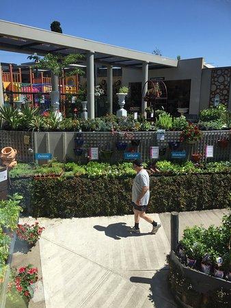 Essendon, Australia: photo1.jpg