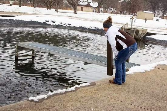 Decorah fish hatchery ia top tips before you go for Iowa fish hatcheries
