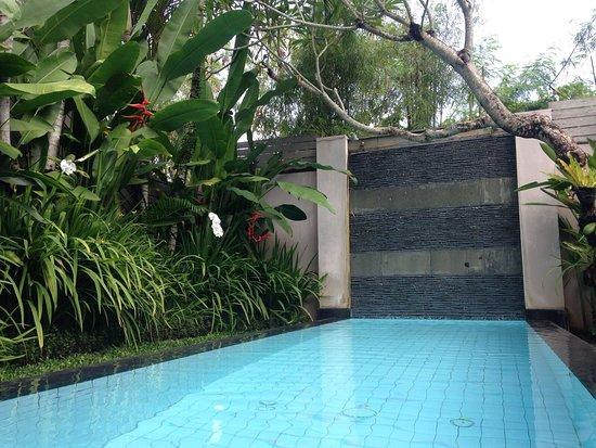 Bali Island Villas & Spa: photo1.jpg