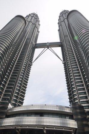 Petronas Twin Towers: twin tower