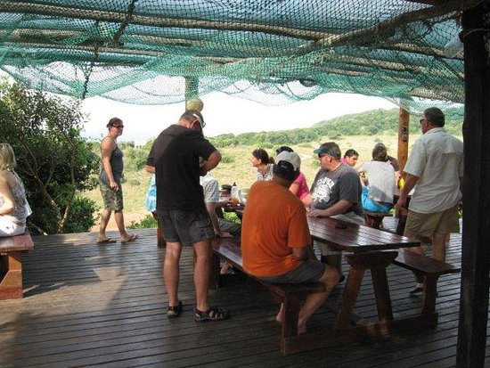 Ponta do Ouro, Mozambique: Travel group havin a pub lunch in the dunes