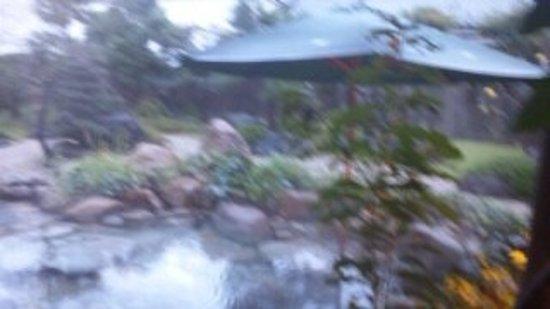 Yasugien: 露天風呂 ゆけむりの中