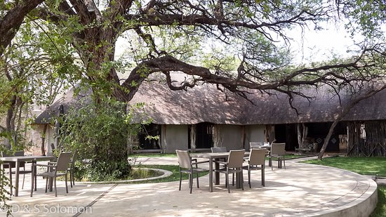 Hwange, Ζιμπάμπουε: Dining under the camelthorn tree