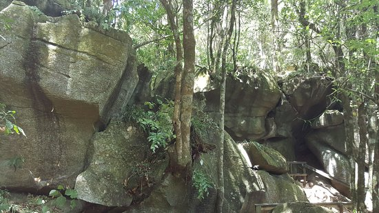 Northland Region, Selandia Baru: Stunning rock formations in bush walk