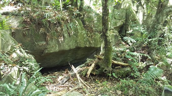 Northland Region, Selandia Baru: Another rock formation