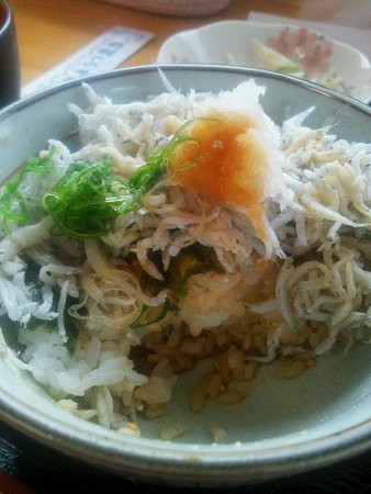 Aki, Japan: ご飯の上にタップリのしらす!