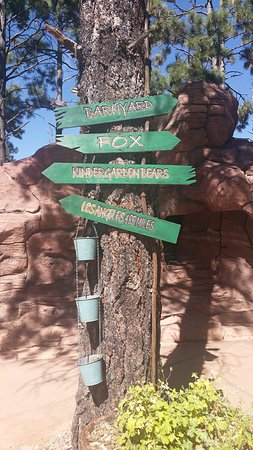 Williams, AZ: Park Rundgang