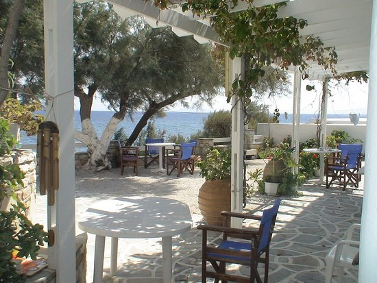 Piso Livadi, Greece: sea side garden